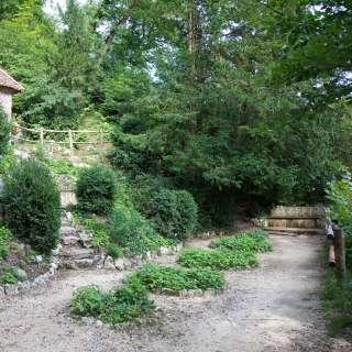 The Hermit's Garden